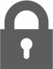 Icon - Security - Gray.png